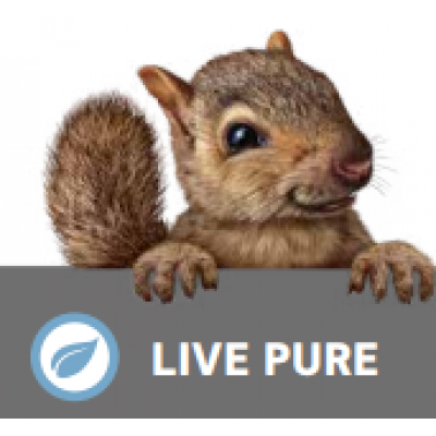 Boen Live Pure