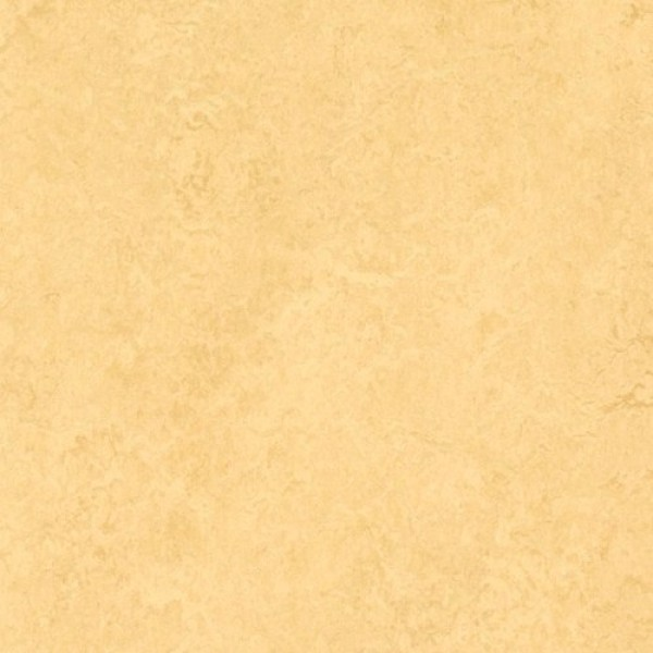 Forbo Marmoleum Dual Butter